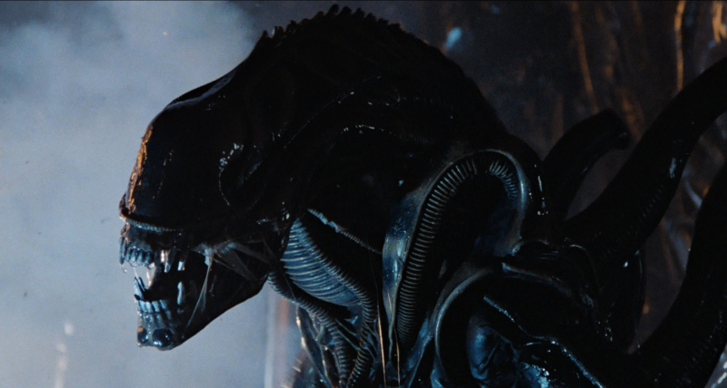 Xenomorph Birth of a Monster featured
