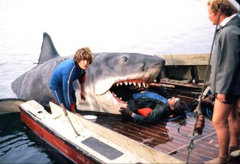 Jaws Shark